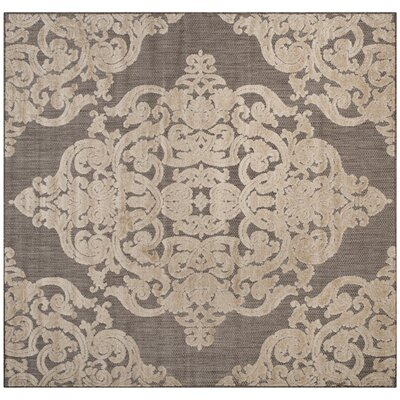 Lievin Taupe Indoor/Outdoor Area Rug Rug Size: Square 67 x 67