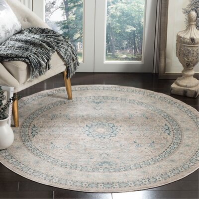 Bertille Gray/Blue Area Rug Rug Size: Round 5
