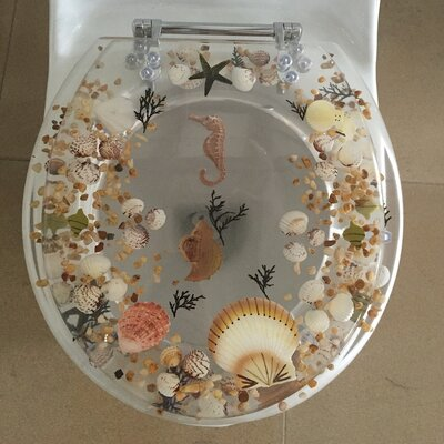 Sea Treasure Decorative Round Toilet Seat Color: Clear