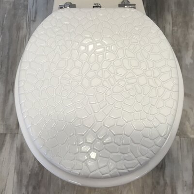 Molded Wood Round Toilet Seat Finish: Stone White