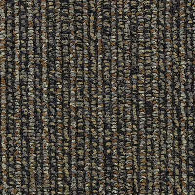 Hollytex Modular Anthology 24 x 24 Carpet Tile in Plays