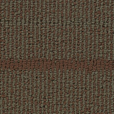 Hollytex Modular Transit 24 x 24 Carpet Tile in Sienna