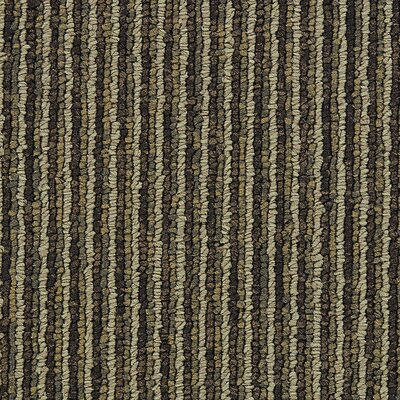 Hollytex Modular Made To Measure 19.7 x 19.7 Carpet Tile in Camel Hair