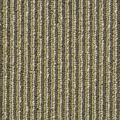 Hollytex Modular Made To Measure 19.7 x 19.7 Carpet Tile in Stetson
