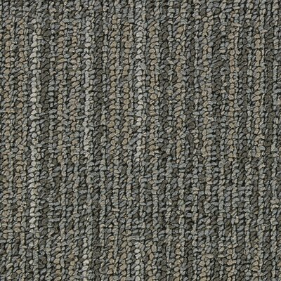 Hollytex Modular Evoke 19.7 x 19.7 Carpet Tile in Pebble Dust