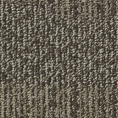 Hollytex Modular Evoke 19.7 x 19.7 Carpet Tile in Sand Shower