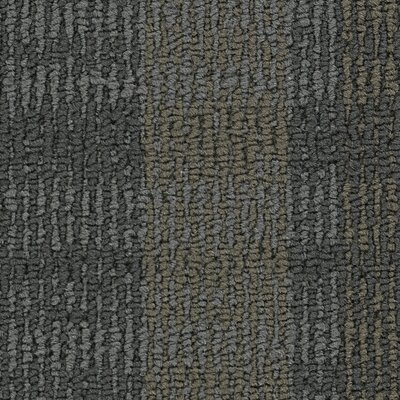 Hollytex Modular Impromptu 24 x 24 Carpet Tile in Spontaneity