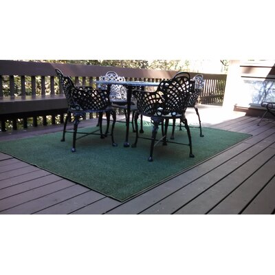 Hand-Tufted Olive Green Indoor/Outdoor Area Rug