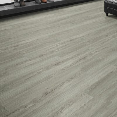 Southern Expressions 6 x 49 x 5mm Luxury Vinyl Plank in Charlottesville