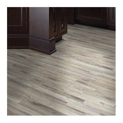 Stunner 4 x 12.3mm Laminate Flooring in Naples