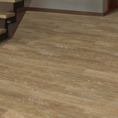 Wanderer 6 x 12.3mm Laminate Flooring in Geneva