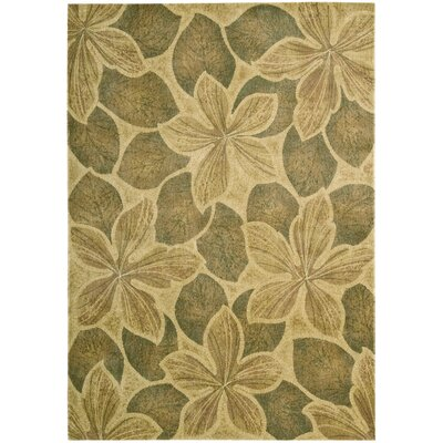 Winton Light Gold Area Rug Rug Size: 56 x 75