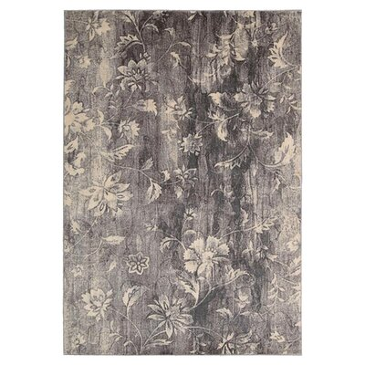 Tien Ivory/Slate Area Rug Rug Size: Rectangle 36 x 56