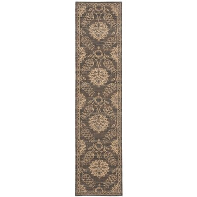 Eidelweiss Graphite Ornamental Leaf and Floral Area Rug Rug Size: Runner 25 x 10