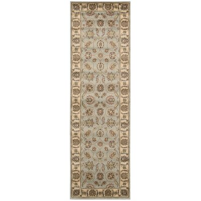 Baum Light Blue Rug Rug Size: Runner 23 x 76