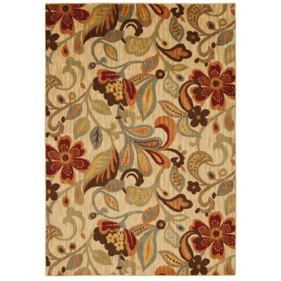 Dieterich Ivory Area Rug Rug Size: Rectangle 79 x 1010
