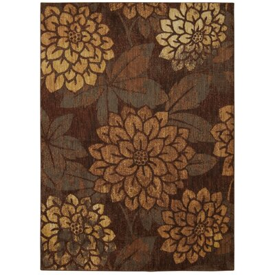 Drossett Latte Area Rug Rug Size: Rectangle 53 x 75