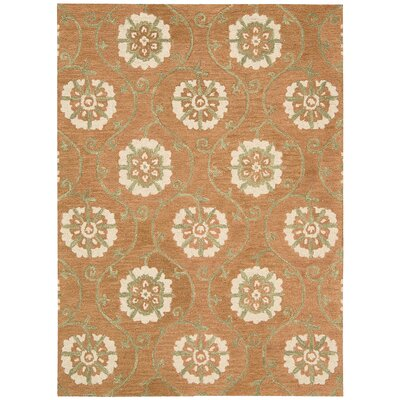 Donnellson Hand-Tufted Persimmon Area Rug Rug Size: Rectangle 8 x 106