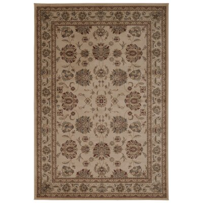 Swenson Ivory Area Rug Rug Size: Rectangle 53 x 74