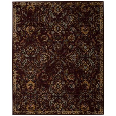 Eternal Pomegranate Area Rug Rug Size: 86 x 116