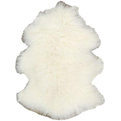 Fur Tibetan Sheepskin Area Rug Color: White