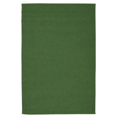 Sojourn Hand-Woven Green Area Rug Rug Size: 76 x 96