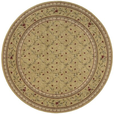 Fairchild Gold Area Rug Rug Size: Round 56