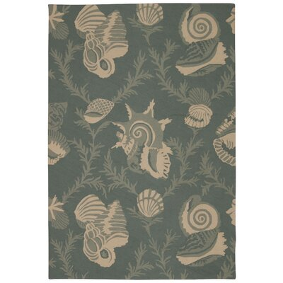 Lilian Aqua Indoor/Outdoor Area Rug Rug Size: Rectangle 8 x 106