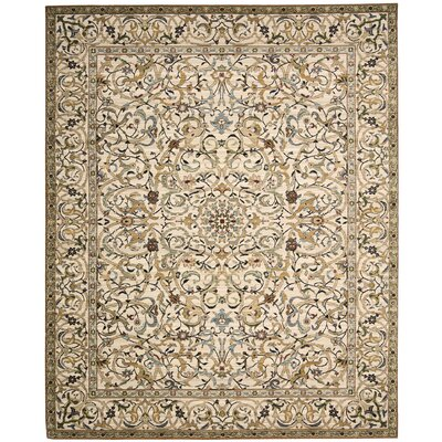 Timeless Copper Area Rug Rug Size: 5'6