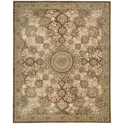 Hand Woven Wool Copper Indoor Area Rug Rug Size: 79 x 99