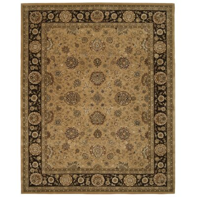 Hand Woven Wool Taffe Indoor Area Rug