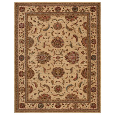 Living Treasures Ivory Area Rug Rug Size: 56 x 83