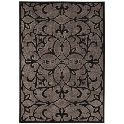 Burnham Black Area Rug Rug Size: 53 x 75