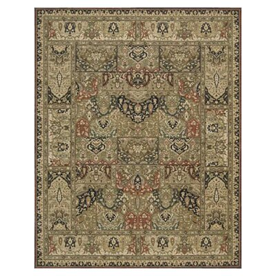 Living Treasures Khaki Area Rug Rug Size: Runner 26 x 8