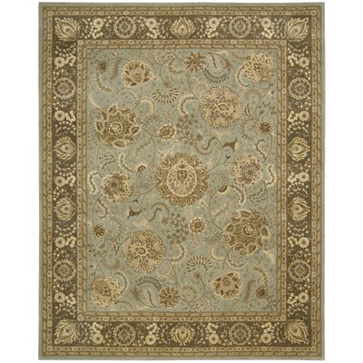 Nourison 2000 Hand Woven Wool Blue Indoor Area Rug Rug Size: 99 x 139