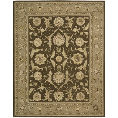 Nourison Brown Area Rug Rug Size: 86 x 116