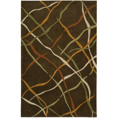 Dimensions Brown Area Rug Rug Size: 76 x 96