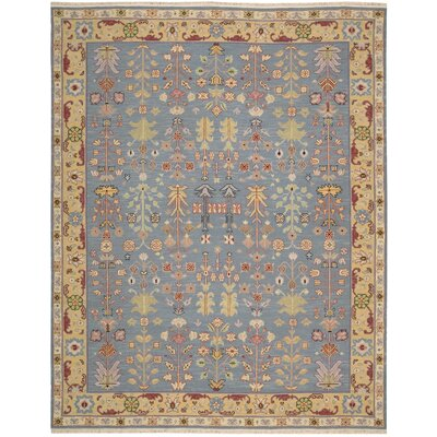 Pierson Hand-Woven Blue/Yellow Area Rug Rug Size: Rectangle 510 x 810