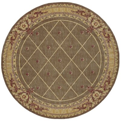 Payzley Cocoa Area Rug Rug Size: Round 75