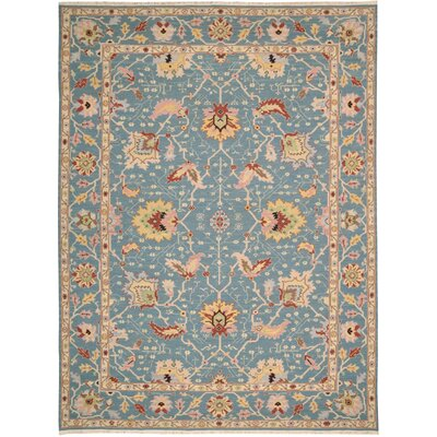 Pierson Hand-Woven Blue Area Rug Rug Size: Rectangle 710 x 910
