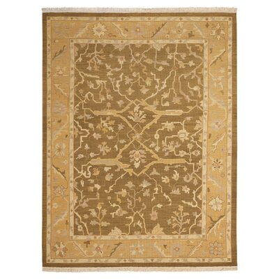 Nourmak Encore Hand-Woven Olive Area Rug Rug Size: 56 x 75