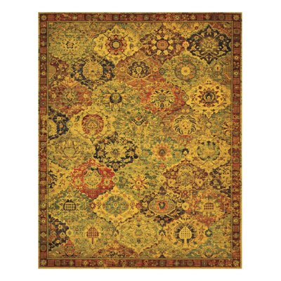 Eternal Multi Flower and Vase Area Rug Rug Size: 79 x 99