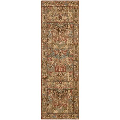 Living Treasures Brown Area Rug Rug Size: Runner 26 x 12