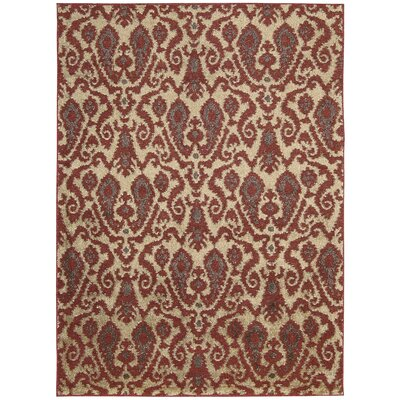 Duarte Ivory/Red Area Rug Rug Size: Rectangle 5 x 7