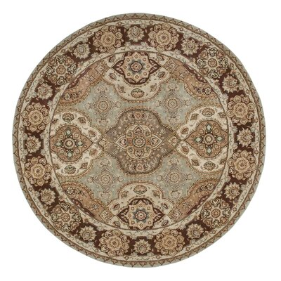 Nourison Tan Area Rug Rug Size: Round 4