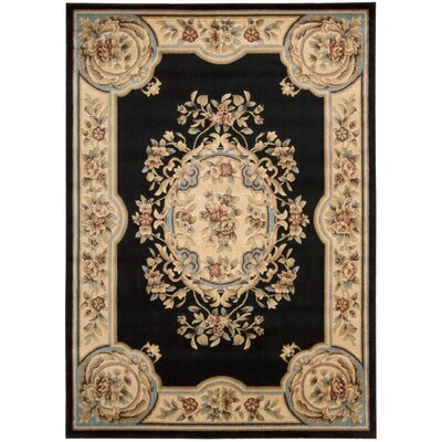 Beacan Black Area Rug Rug Size: Rectangle 33 x 53