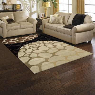 Dimensions Brown Area Rug Rug Size: 5' x 8'