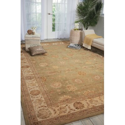 Light Green Area Rug Rug Size: 86 x 116