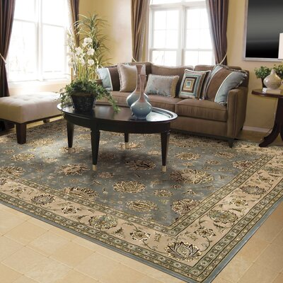Nourison 2000 Hand Woven Wool Blue Indoor Area Rug Rug Size: 39 x 59