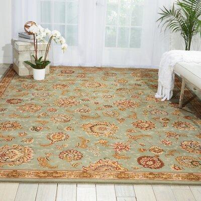 Hand Woven Wool Aqua Indoor Area Rug Rug Size: 99 x 139